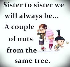 Inspirational Quotes For Sisters Unique Inspirational Quotes About Sisters Love 48 Lovely Inspirational