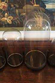 collection of napoleon iii glass domes on wooden pedestals