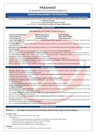 Sales Executive Sample Resume Area Sales Manager Sample Resumes Download Resume Format Templates