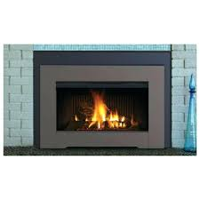 superior fireplace insert bc36 br 36 2 doors