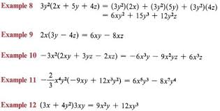 expand terms multiply polynomials with
