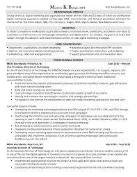 Marketing Resume Format Executive Sample Mid Lev Peppapp