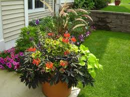 container gardening. Container Gardening R