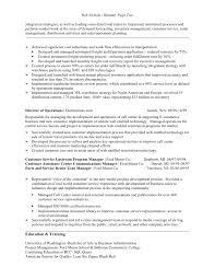 Retail Functional Resume Template Magnolian Pc