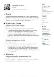 Hairdresser Sample Example Cv Examples