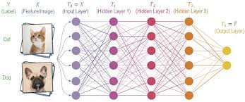 Deep Neural Network Estimating Information Flow In Deep Neural Networks Ibm