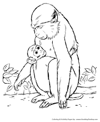 Small Picture Wild Animal Coloring Pages Wild Animals Coloring Pages and