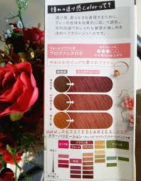 Review Liese Prettia Hair Color Provence Rose