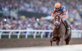2014 Breeders Cup Charts Cashing On The Classic Breeders Cup 2019 Recap Super