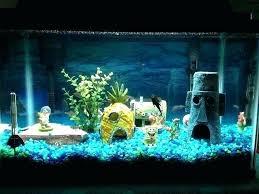 betta fish tank decor coolest fish tank decorations bedroom odd tanks unique for unusual to
