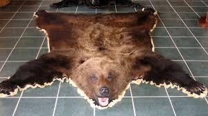 bear skins bear skin rugs grizzly