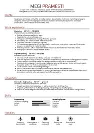 Marketing Job Resume Examples 1150 Resume Samples From Real Professionals Who Got Hired