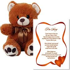 i m sorry love poem and plush teddy bear sorry gift for him or her in 5x7 inch clear acrylic frame with 10 inch bear