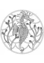 Kleurplaat Mandala 1802b Afb 4571 Images