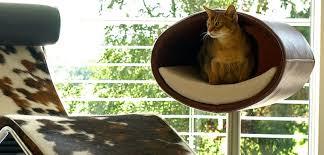 cat modern furniture. image of good modern cat furniture