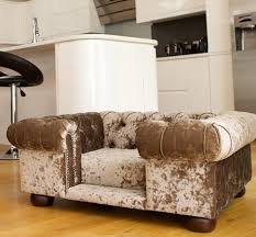 luxury dog beds. Balmoral Truffle Velvet Luxury Dog Sofa Beds