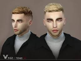 male hair tz0420 by wingssims liquid sims