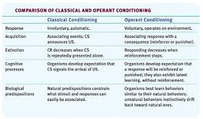 essay on classical conditioning and operant conditioning essay on classical conditioning and operant conditioning