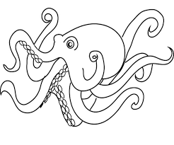 Small Picture Animal Octopus Coloring Page Animal Coloring pages of