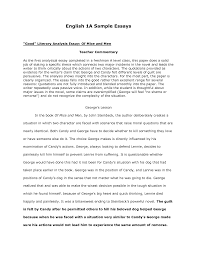 example essay english co example essay english
