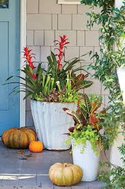 Images About Winter Planters On Pinterest Pansies Container Garden Container Garden Ideas For Fall