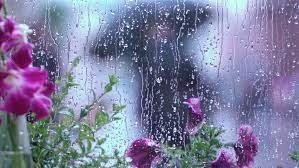 rainy day behind wet window stock