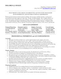 Agreeable Professional Accounting Resume With Additional Of