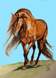 horse drawing in color.  Drawing Horse Drawing  Spanish Barb In Color Pencil By Cheryl Poland With U
