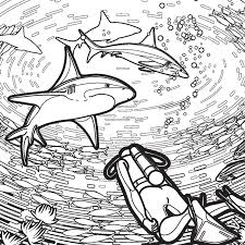 Small Picture Free Shark Coloring Pages for Shark Week and More