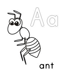 Small Picture Trend Ant Coloring Page 77 2144