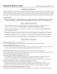 International Resume Template Marketing Engineer Resume Rural
