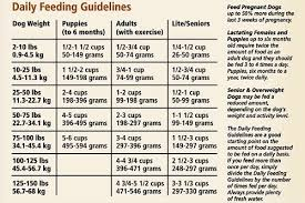 Canidae Dog Food Feeding Chart Canidae Life Stages Dry Dog Food For Puppies Adults Seniors