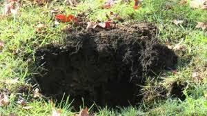 ground penetrating radar for yard sinkholes