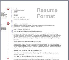 Correct Format For A Resume Mesmerizing Correct Resume Format Correct Resume Format Resume Samples