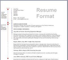 Correct Resume Format Correct Resume Format Resume Samples