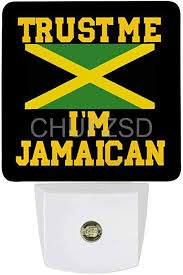 Trust Me I'm Jamaican <b>Intelligent LED Sensor</b> Night Light Lamp Auto ...