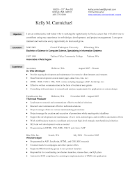 Merchandiser Resume Objective Resume For Study