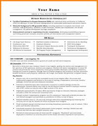 Resume Examples Skills Best Of Skills And Interests Resume Sample ...