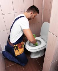Clogged Toilets The Most Common Plumbing Nightmare And How To Avoid