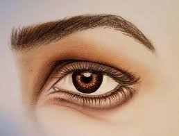drawing painting demonstration realistic eye pastel close up brown version
