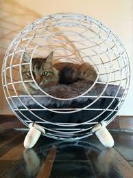 Furniture: Hanging Cat Bed Play Ideas - Cat House