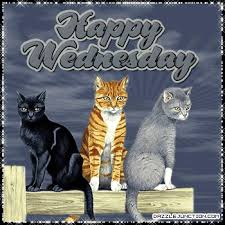 Image result for have a wonderful Wednesday gifs