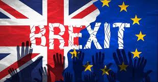 """Résultat de recherche d'images pour """"funny pictures of brexit"""""""