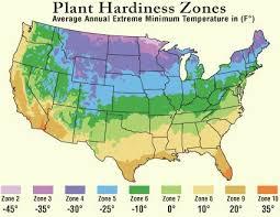 Tree Hardiness Zones Usda Hardiness Zone Map For Trees Shrubs
