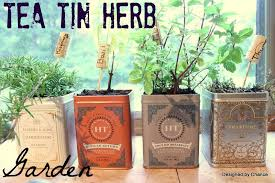 Small Picture Designed by Chance Tea Tin Herb Garden