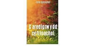 Caredigrwydd cyfrinachol (Welsh Edition) eBook: Gallagher, Felix :  Amazon.in: Kindle Store