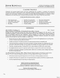 Payroll Resume Template Professional Template Resume Awesome Resume