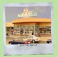 The Chrysalis Clothing Company Dear Mall A Breakup Letter