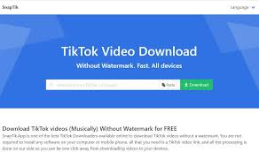 No, we don't store any videos or music on our servers. Tiktok Downloader Download Video Tiktok Without Watermark Snaptik