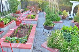 Small Picture Free Kitchen Garden Ideas India With Design In Home Designs
